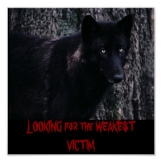 wolf - LOOKING for the WEAKEST VICTIM Poster
