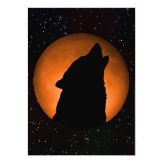 Wolf Moon Photo