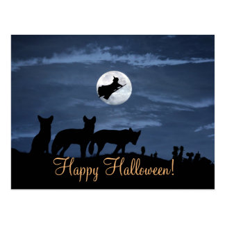 Wolf Pack Happy Halloween Witch Postcard