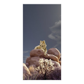 Wolf Customized Photo Card