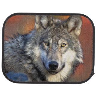 Wolf Photograph Car Mat