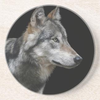 Wolf Portrait Black Background Predator Carnivore Coaster