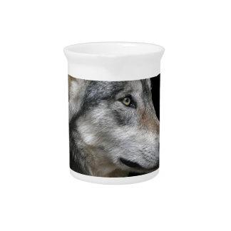 Wolf Portrait Black Background Predator Carnivore Pitcher