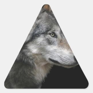 Wolf Portrait Black Background Predator Carnivore Triangle Sticker