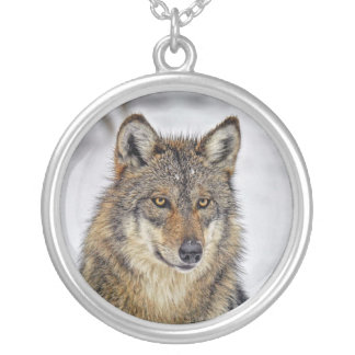 Wolf Portrait in Show Necklace