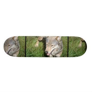 Wolf Prowl Skateboard