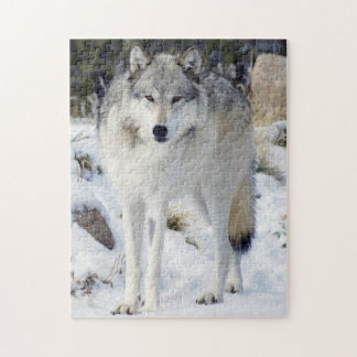 "Wolf Puzzle 11"" x 14"" 252 Piece With Gift Box"