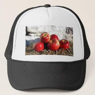 Wolf River Apples Trucker Hat