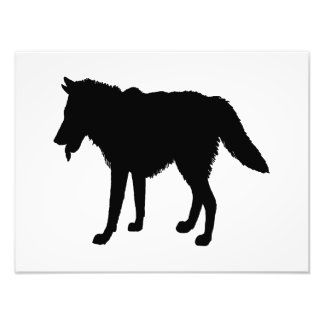 Wolf silhouette photo print