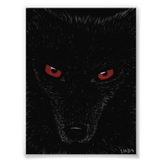 Wolf Stare Photo Print