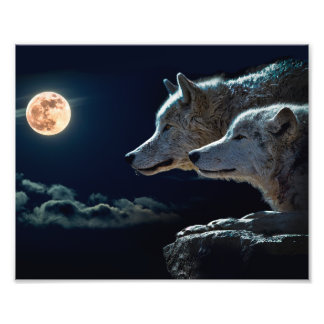 Wolf Wolves Howling at the Full Moon Photo Art