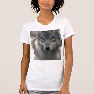 Wolf Women's American Apparel Fine Jersey T Shirts