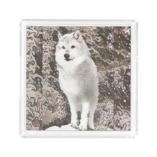 Wolfe Acrylic Tray