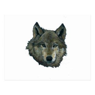 Wolfie Postcard