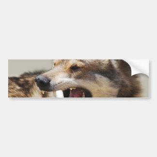 Wolf's Fangs Bumper Sticker