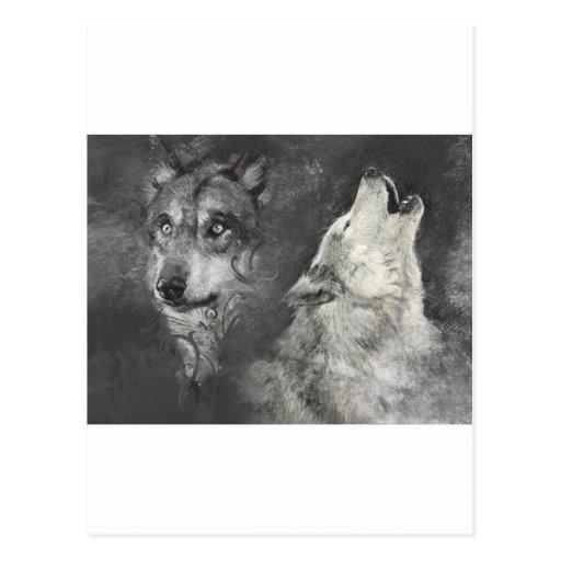 Wolfs Postcards