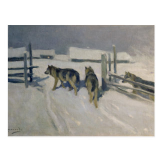 Wolfs, Winter Night, c.1910 Postcard