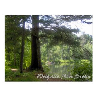 Wolfville, Nova Scotia, Resevoir Park Postcard