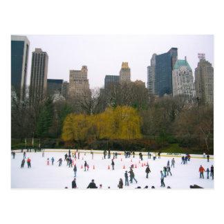 Wollman Rink NYC Skating Rink Central Park Photo Postcard
