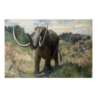 Wolly Mammoth Poster