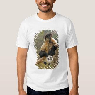 Wolong Panda Reserve, China, 2 1/2 yr old Tee Shirts