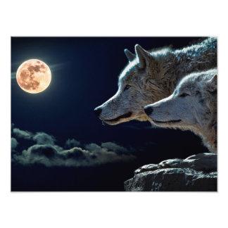 Wolves Photo Art