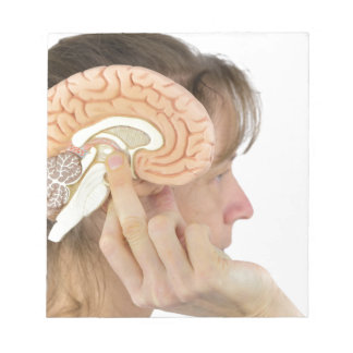 Woman holding hemisphere model  against head notepad
