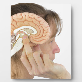 Woman holding hemisphere model  against head plaque
