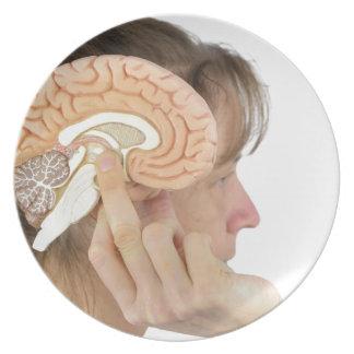 Woman holding hemisphere model  against head plate