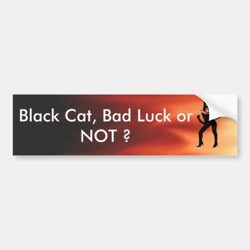 Woman in black cat suit on a flames background bumper sticker
