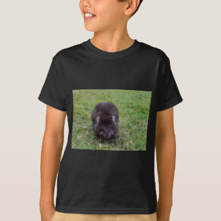 WOMBAT TASMANIA AUSTRALIA T-Shirt