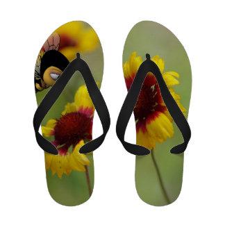 Women`s flip Flops Shasta Daisies