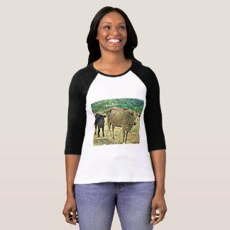 Women's Bisbee Cows Raglan 3/4 Sleeve Tee Shirt
