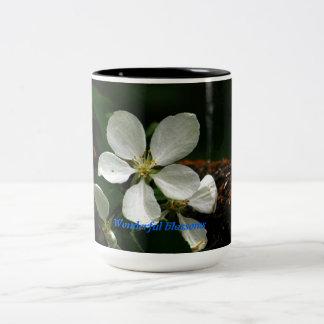 Wonderful blossoms Two-Tone mug