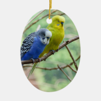 Wonderful Budgie Ceramic Ornament