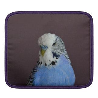 Wonderful Budgie Sleeve For iPads
