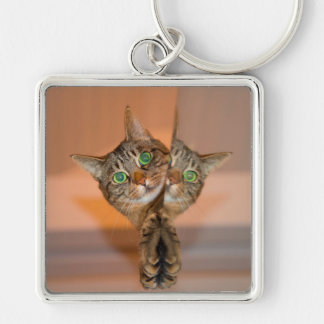 Wonderful Cat Silver-Colored Square Key Ring
