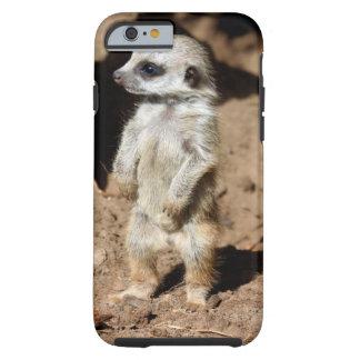 Wonderful Cute Sweet African Meerkat Animal Tough iPhone 6 Case