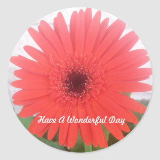 Wonderful Day Red Gerber Daisy Flower Sticker