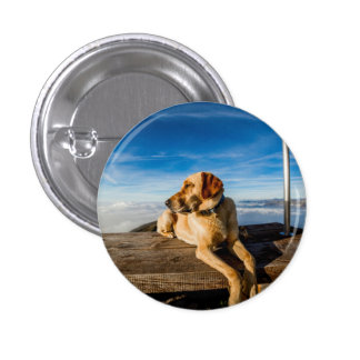 Wonderful Dog Pin