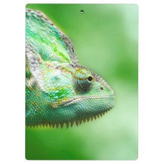 Wonderful Green Reptile Chameleon Clipboard