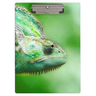 Wonderful Green Reptile Chameleon Clipboards