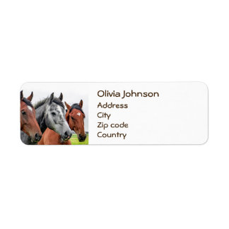 Wonderful Horses Stallion Photography Return Address Label