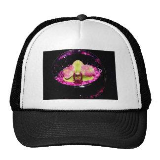 Wonderful Orchid Decoration Trucker Hat