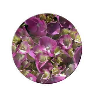 Wonderful Pink Hydrangea Porcelain Plate Small