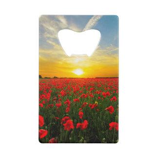 Wonderful Poppy Field Sunset Horizon