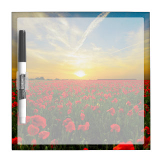 Wonderful Poppy Field Sunset Horizon Dry-Erase Whiteboard