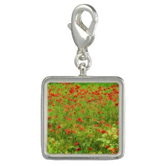 Wonderful poppy flowers VII - Wundervolle Mohnblum