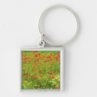 Wonderful poppy flowers VII - Wundervolle Mohnblum Silver-Colored Square Key Ring
