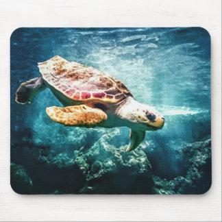 Wonderful  Sea Turtle Ocean Life Turquoise Sea Mouse Pad
